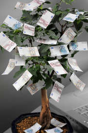 arbre-billet-argent-euros