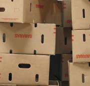 Transport de marchandises : n'oubliez pas l'assurance professionnelle