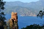 En Corse, l'auto-entreprise s'illustre dans l'artisanat et les services