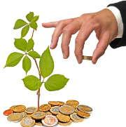 plante-arbre-argent-pieces-main