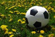 La « BTP Cup » aura lieu le 21 mai 2015 à Nanterre