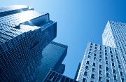 Découvrez Canopy, la nouvelle offre d'assurance pro destinée aux entreprises
