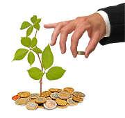 homme-main-argent-pieces-euros-plante