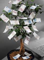 arbre-billets-euros-argent-feuilles