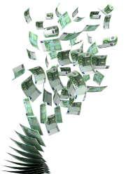 Quelle assurance professionnelle face aux pertes d'exploitation ?