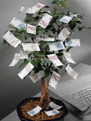 arbre-billets-euros-argent