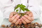 Epargne retraite Perp : versement des cotisations et transfert